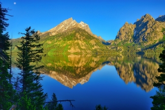 Jenny Lake Morning Reflections