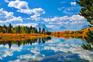 Still Reflections at Oxbow Bend