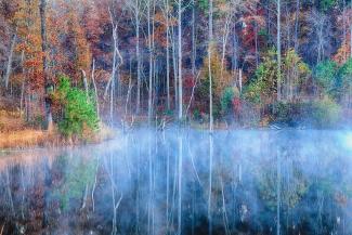 Foggy Morning Reflections