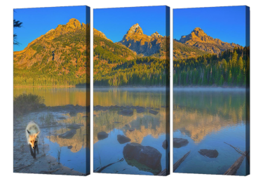 Taggart Lake Triptych
