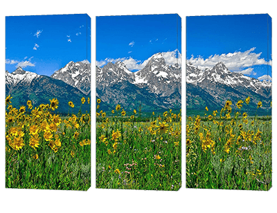 Fine art nature triptych sets