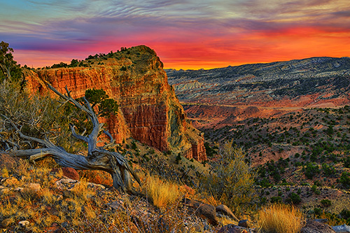 Capitol-Reef-Desert-Sunset.jpg