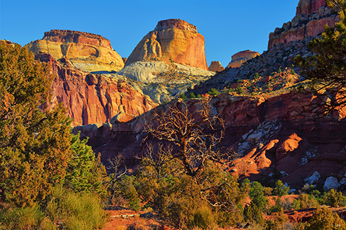 Golden Throne in Capitol Reef National Park